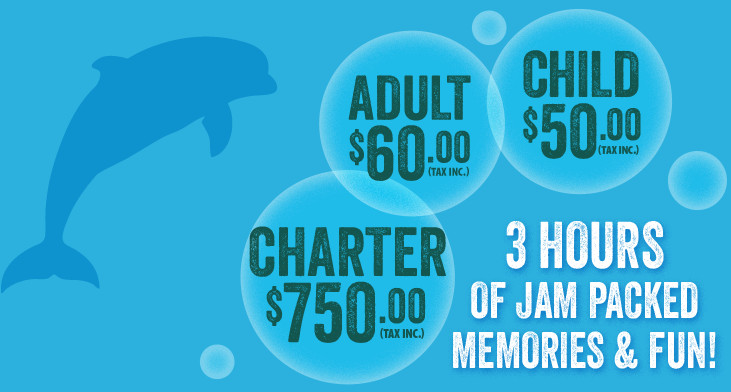 Adult $40.00, Child $30.00 for 3.5 hours of memories and fun!